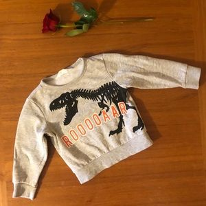 Boys H&M Dinosaur Sweater